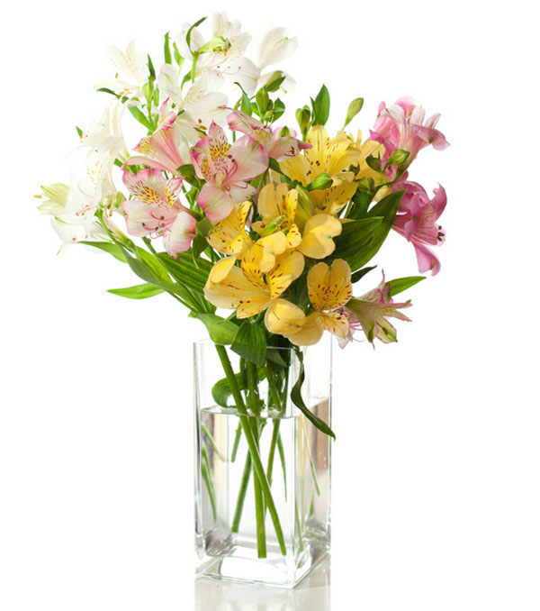 freesias and alstromerias
