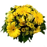 yellow mix with gerberas