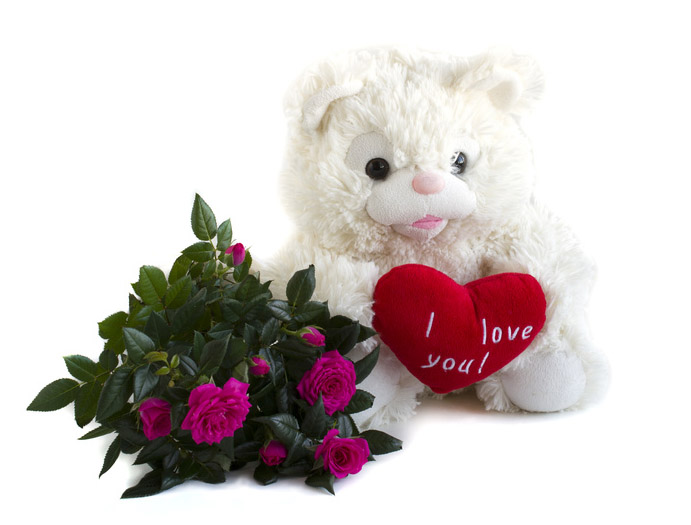 bouquet pink roses and teddy bear