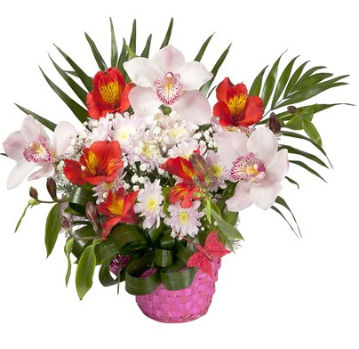 basket of red alstromerias and white orchids