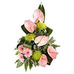 anthurium and gerberas