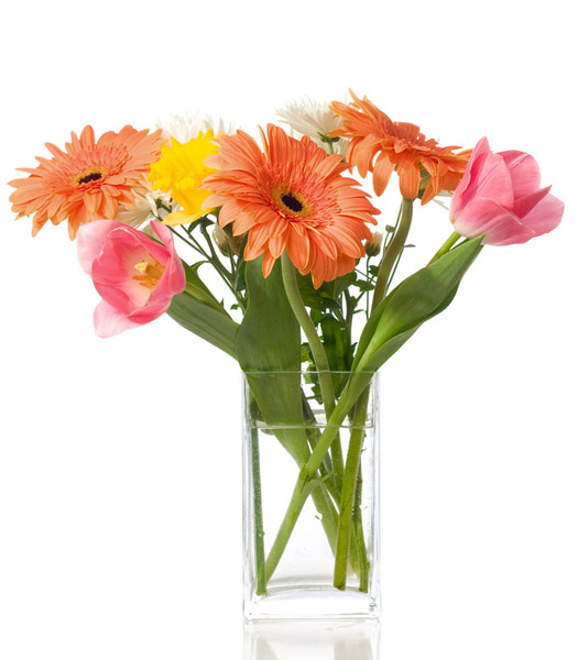 pink tulips and mixed gerberas
